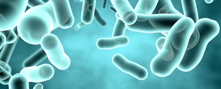 Legionella Analysis